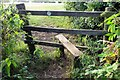 SP4702 : Stile on the footpath by Steve Daniels