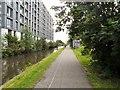 SJ8598 : Ashton Canal alongside Milliners Wharf by Gerald England