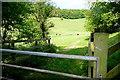 SU8186 : Footpath towards Marlow by Graham Horn