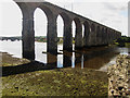 NT9953 : The Royal Border Bridge by Graham Robson