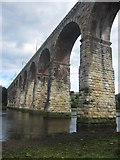 NT9953 : Looking along the west side of the Royal Border Bridge by Graham Robson