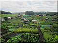 NU0052 : Allotments, Berwick-upon-Tweed by Graham Robson