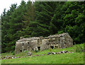 NY9000 : Ruined house and barn, Rukin Wood upper Swaledale by Karl and Ali