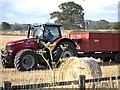 TM1243 : Massey Ferguson 8690 Tractor at Poplar Farm by David Dixon