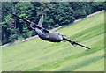 NT2318 : A low flying Hercules at Riskinhope by Walter Baxter