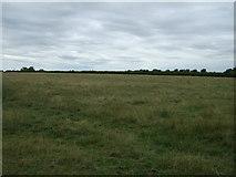 TF2065 : Farmland near Reeds Beck by JThomas