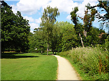 TQ2636 : Path, Goffs Park by Robin Webster