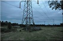 ST0209 : Mid Devon : Grassy Field & Pylons by Lewis Clarke