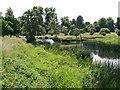 SP2556 : Charlecote Park, River Avon by David Dixon