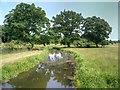 SP2556 : River Dene, Charlecote Park by David Dixon