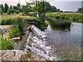 SP2556 : River dene Weir, Charlecote Park by David Dixon