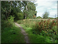 TQ0372 : Path to the moor by Alan Hunt