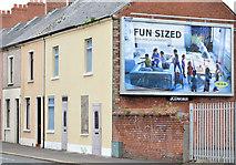 J3673 : Nos 299&301 Beersbridge Road, Belfast (2013-1) by Albert Bridge