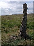 SK2775 : Stone Guide Post by Stephen Burton