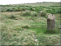 SK2775 : Stone Circle by Stephen Burton