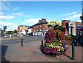 SO5140 : Flower Tub by the Ring Road by Des Blenkinsopp