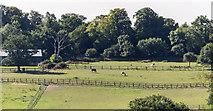 TQ2996 : Farmland, Trent Park, Cockfosters, Hertfordshire by Christine Matthews