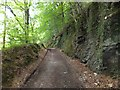 SX4764 : A track carved into the rock of the hillside by David Smith