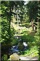 NU0702 : Footbridges by DS Pugh