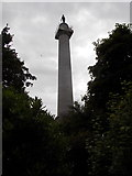 SH5371 : Llanfairpwllgwyngyll: Marquess of Anglesey's Column by Chris Downer