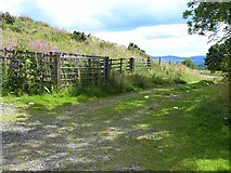 NO2650 : Field entrance and gates at the foot of Barry Hill by Oliver Dixon