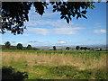 SE7172 : Farmland north of Coneysthorpe Banks Wood by Pauline E