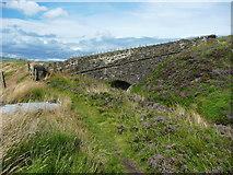SE0511 : Bridge over the Blackmoorfoot Conduit by Humphrey Bolton