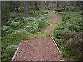 NO4795 : Footbridges over the 'issues' feeding Glen Tanar's trout loch by Stanley Howe