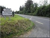 H1517 : R202 at Culliagh by Kenneth  Allen