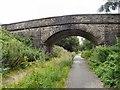 SJ9493 : Knott Fold Bridge by Gerald England