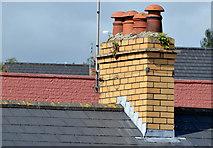 J4569 : Bar chimney, Comber by Albert Bridge