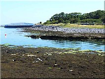 M2208 : Mouth of Ballyvaghan Harbour at low tide by Oliver Dixon