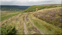 SE8292 : High above Newton Dale on Levisham Moor by Chris Morgan
