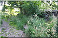 SE0051 : Skipton Moor Lane by Roger Templeman