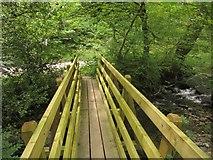 SS9529 : Footbridge near Hartford by Derek Harper