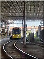 SJ8498 : Roof Scaffolding at Manchester Victoria Station by David Dixon