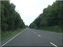TF6731 : A149 looking north by Colin Pyle