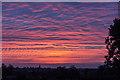TQ3095 : Beautiful Sunrise, London N14 by Christine Matthews