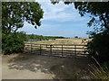 TL1592 : Farmland near The Bungalow by Richard Humphrey