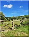 SE8493 : Gate & Stile - Hole of Horcum by Scott Robinson