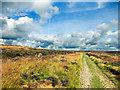 SE8393 : Footpath Across Levisham Moor by Scott Robinson