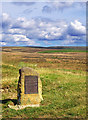 SE8391 : Levisham Moor View by Scott Robinson