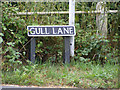 TG2803 : Gull Lane sign by Adrian Cable