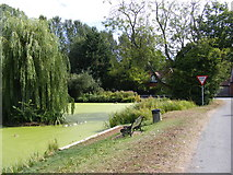 TG2902 : Yelverton Pond by Adrian Cable