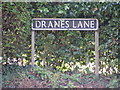 TG2902 : Dranes Lane sign by Adrian Cable