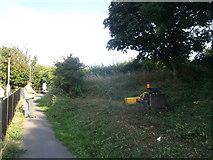TQ7868 : Robomow beside Church Path (2) by David Anstiss