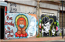 J3374 : Lower Garfield Street, Belfast (2013-1) by Albert Bridge