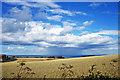 TA0585 : Wheat Fields & Showers at Sea by Scott Robinson