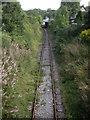 NJ4250 : Keith & Dufftown Railway by Stanley Howe