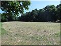 TQ0451 : The Meadow, Clandon Park by Paul Gillett